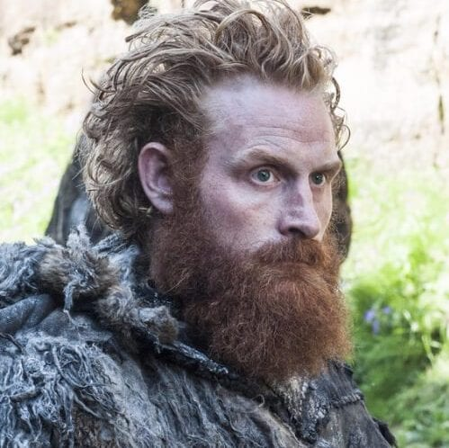 The Tormund viking hairstyles