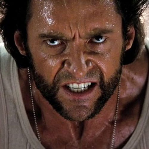 X Men Wolverine Facial Hair