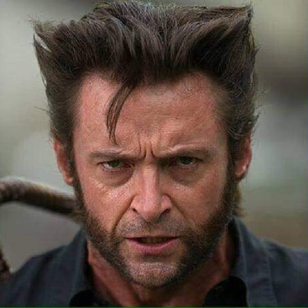 Aggressive Look Wolverine Beard